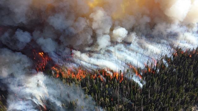 Recomendaciones para evitar incendios de verano